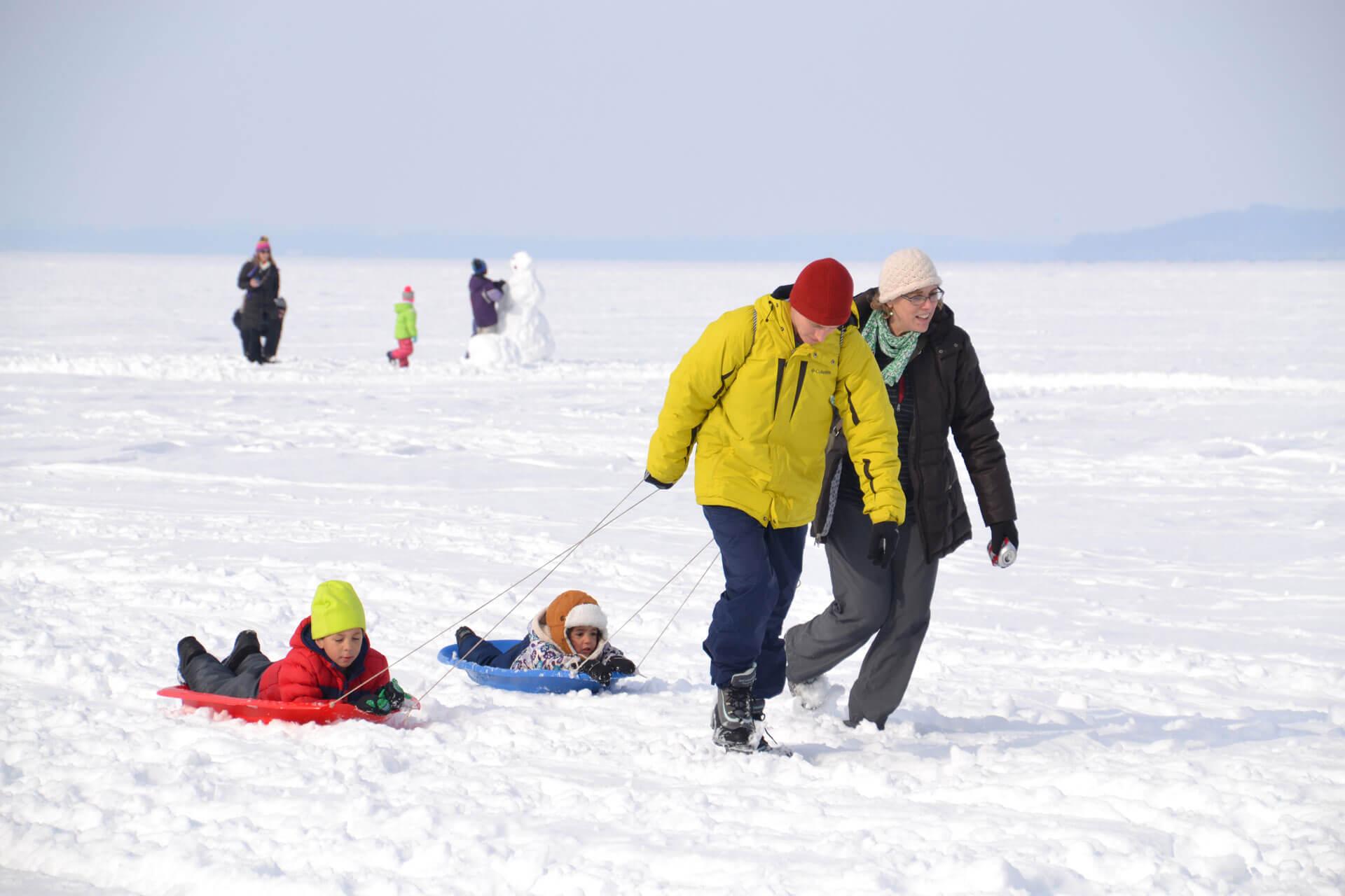 Frozen Assets Festival Sleds