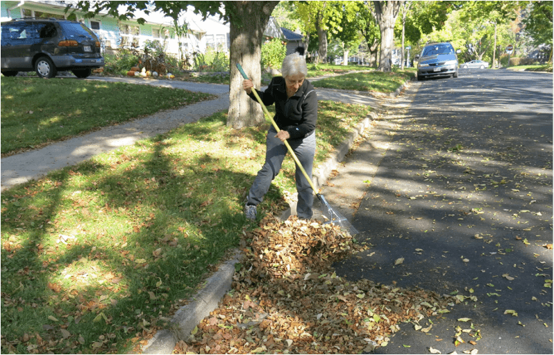 Leaf free streets woman raking leaves from curb