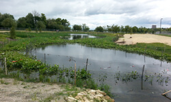Stormwater Treatment Facility for UW-Madison