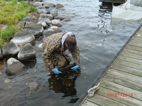 Friends of lake kegonsa work to improve water clarity for Lake mendota fishing report