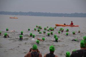 Shoreline Swim