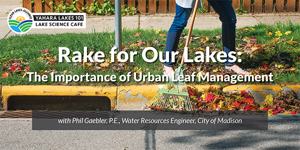 Yahara Lakes 101: Rake for our Lakes