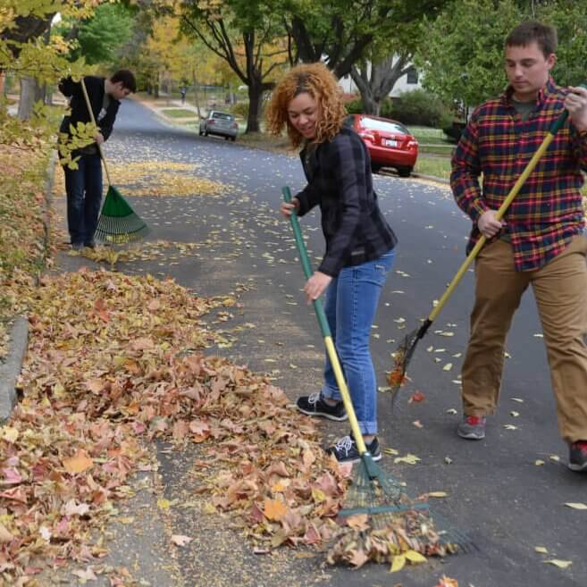 Raking, Friends of Lake Wingra