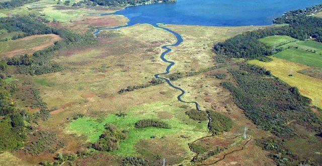 Waubesa Wetlands