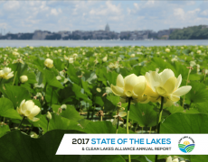 2017 State of the Lakes Report
