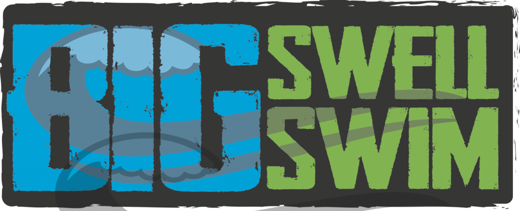 Big Swell Madison Logo