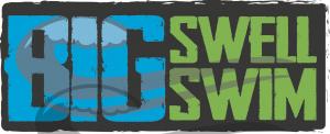 Big Swell Madison Logo